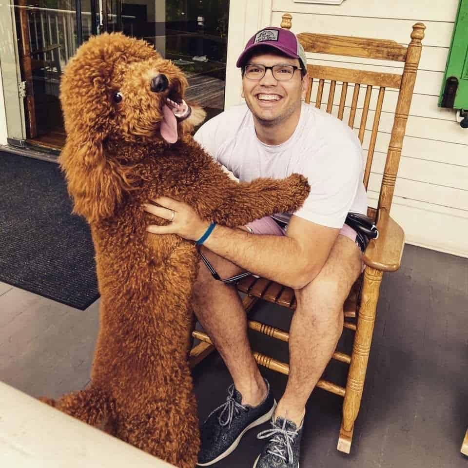 Frank The Digital Marketing Guru Dog