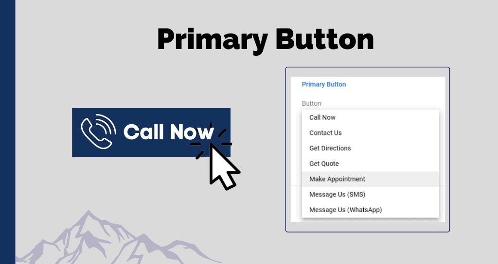 Primary Button